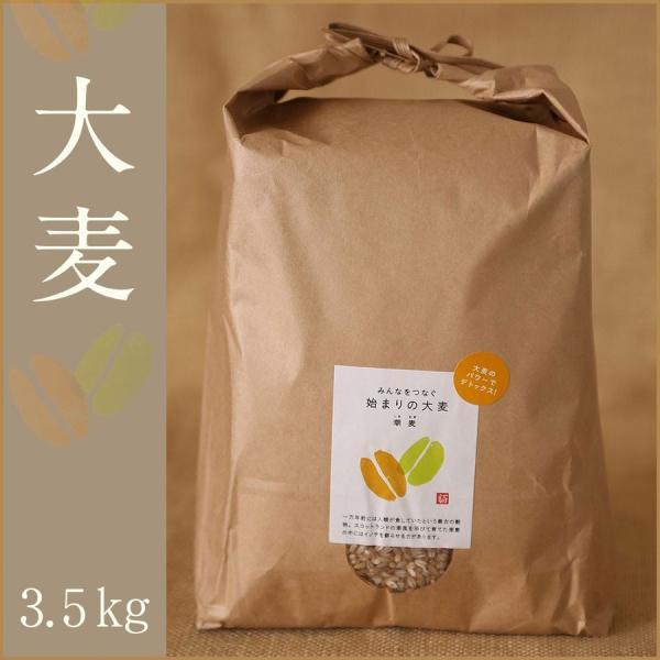 自社農園スコットランド産大麦3.5kg 潮麦 丸麦 麦ご飯 デトックス お菓子 fukui-koshino