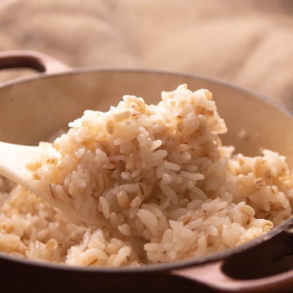 自社農園スコットランド産大麦3.5kg 潮麦 丸麦 麦ご飯 デトックス お菓子 fukui-koshino 16