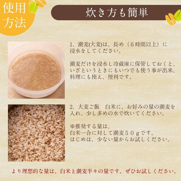 自社農園スコットランド産大麦3.5kg 潮麦 丸麦 麦ご飯 デトックス お菓子 fukui-koshino 09