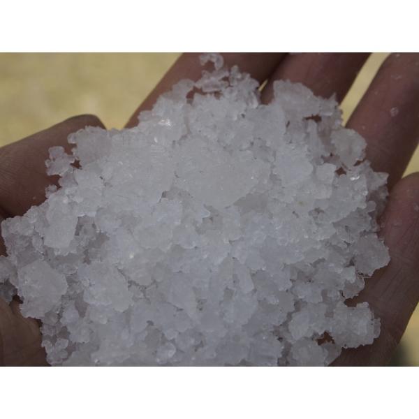 ギリシャ産無添加天日塩つぶ5kg 貊塩 料理やバスソルトに最適 無着色 塩 天然塩 fukui-koshino 10