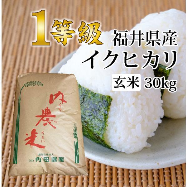 令和 令和元年度産 新米1等級 イクヒカリ 玄米30キロ|fukui-yamasho