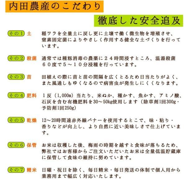 令和 令和元年度産 新米1等級 イクヒカリ 玄米30キロ|fukui-yamasho|04