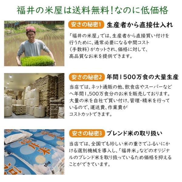米30kg 安い 白米 (10kg×3袋) 福井県産 送料無料|fukuikomeya|13