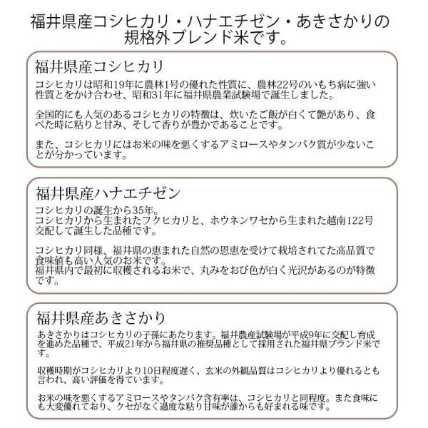 米30kg 安い 白米 (10kg×3袋) 福井県産 送料無料|fukuikomeya|03