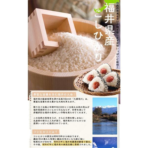 お米 無洗米 コシヒカリ10kg(5kgx2袋) 福井県産 白米 特A29年産 お得クーポンあり 送料無料|fukuikomeya|02