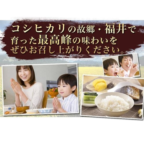 お米 無洗米 コシヒカリ10kg(5kgx2袋) 福井県産 白米 特A29年産 お得クーポンあり 送料無料|fukuikomeya|04