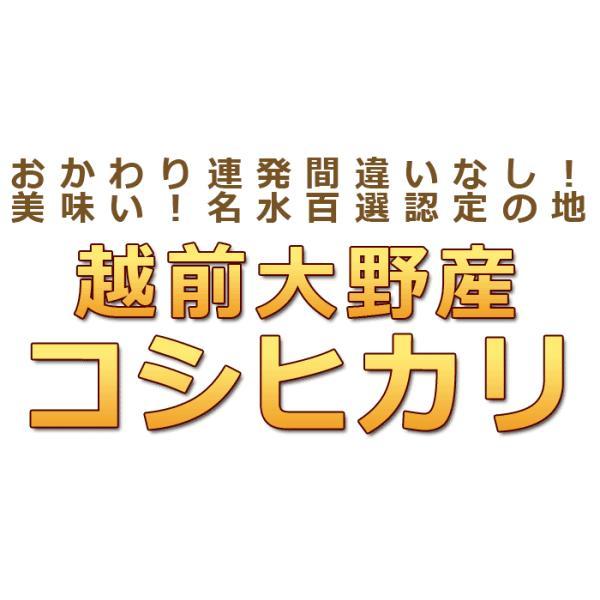 米10kg コシヒカリ10kg(5kg×2) 福井県大野産 特A 白米 29年産 送料無料|fukuikomeya|02