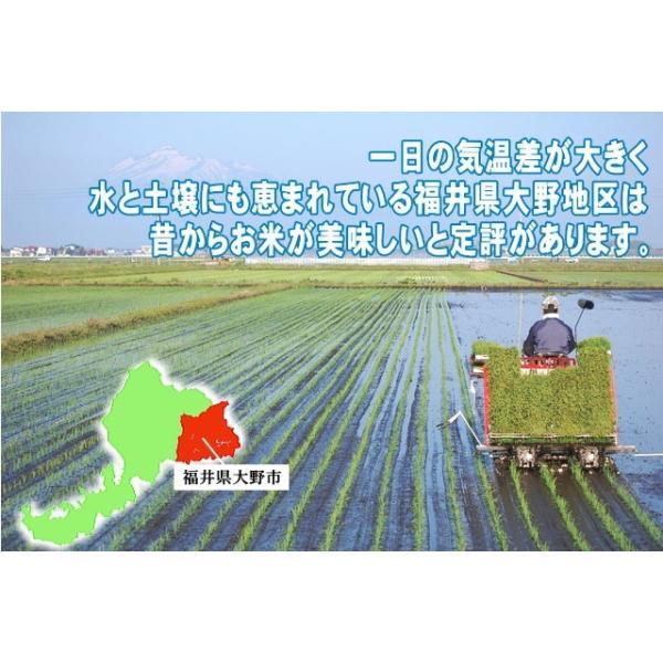 米10kg コシヒカリ10kg(5kg×2) 福井県大野産 特A 白米 29年産 送料無料|fukuikomeya|03