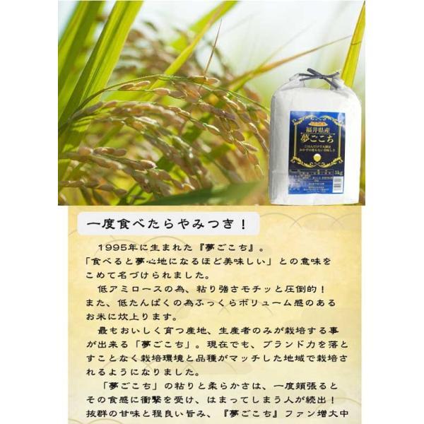 米5kg セール 送料無料  29年産夢ごこち 福井県産 白米|fukuikomeya|02
