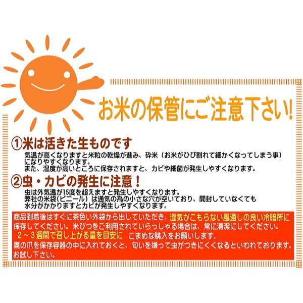 米 5kg 29年産  無洗米 福井県産 ミルキークイーン 5kg 送料無料|fukuikomeya|12