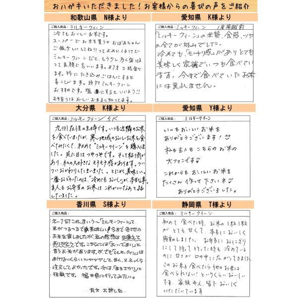 お米 10kg 29年産 無洗米 福井県産 ミルキークイーン 10kg(5kg×2)白米 お得クーポンあり 送料無料|fukuikomeya|08