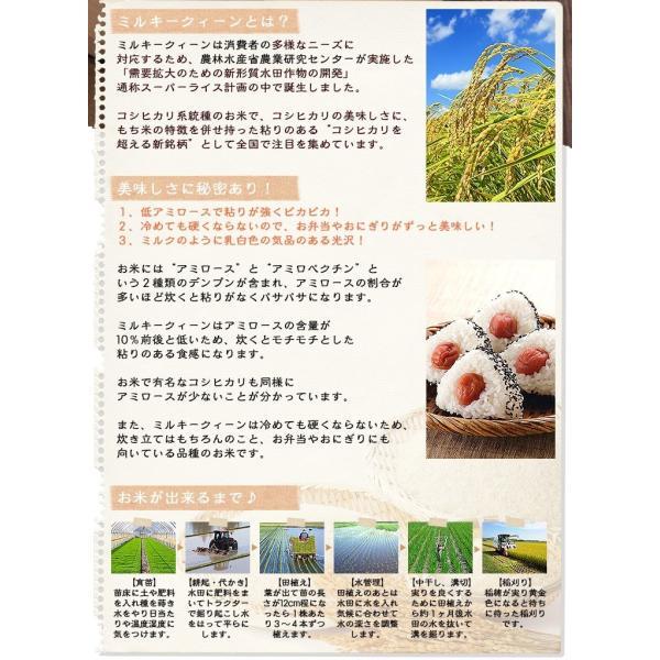 お米10kg 福井県産 ミルキークイーン 10kg(5kg×2) 白米 29年産 送料無料|fukuikomeya|03