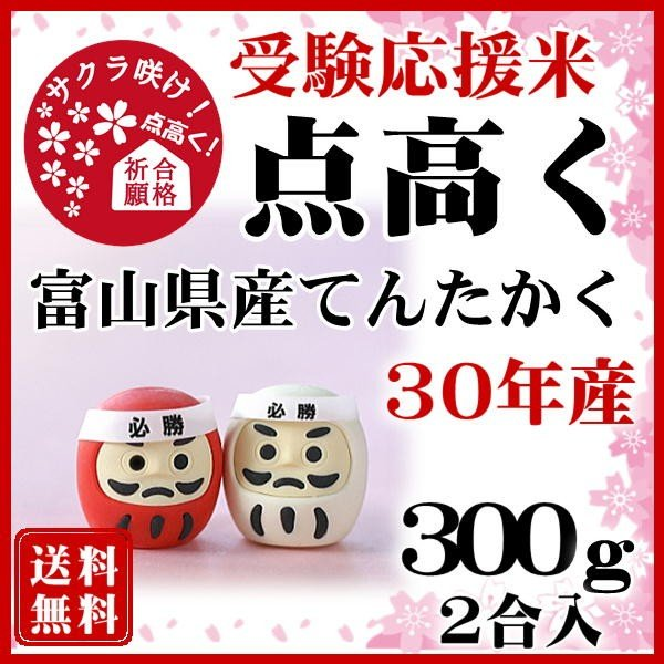 受験応援 点高く 合格祈願 お米 てんたかく 300g お米 富山県産 白米 平成29年産 送料無料 代引不可|fukuikomeya