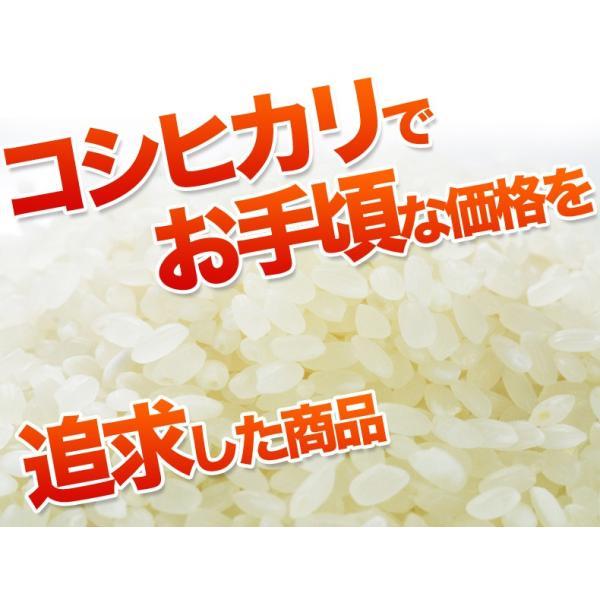 新米 コシヒカリ10kg お米国内産 白米 30年産 故郷コシヒカリ 送料無料|fukuikomeya|02