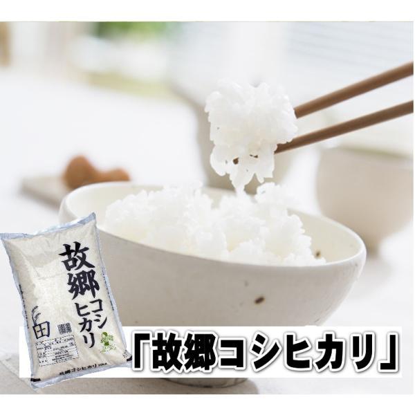新米 コシヒカリ10kg お米国内産 白米 30年産 故郷コシヒカリ 送料無料|fukuikomeya|03