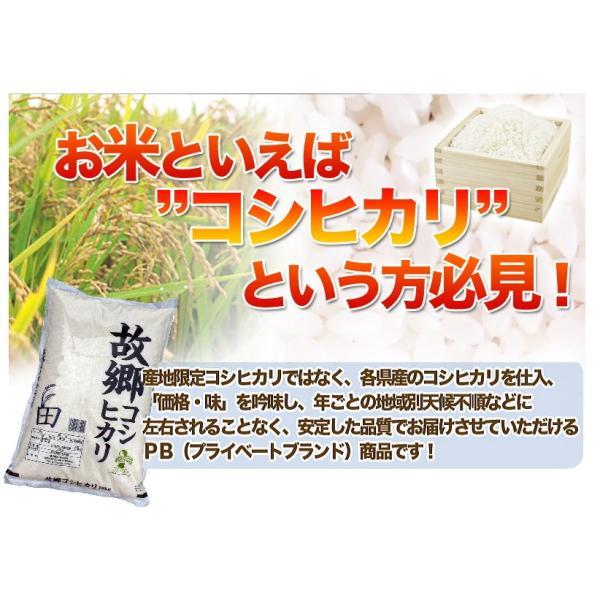 お米 コシヒカリ10kg お米国内産 白米 29年産 故郷コシヒカリ 送料無料|fukuikomeya|04