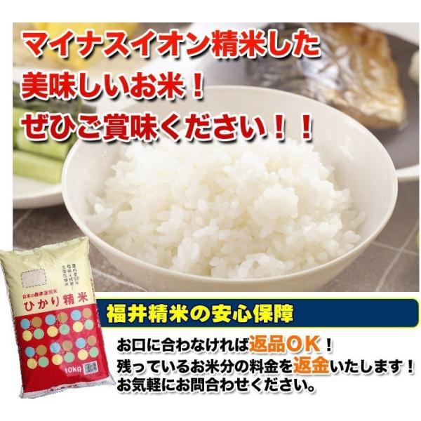 お米 10kg ひかり精米 国内産 家庭応援 白米 10kg 送料無料 一部地域を除く|fukuikomeya|06
