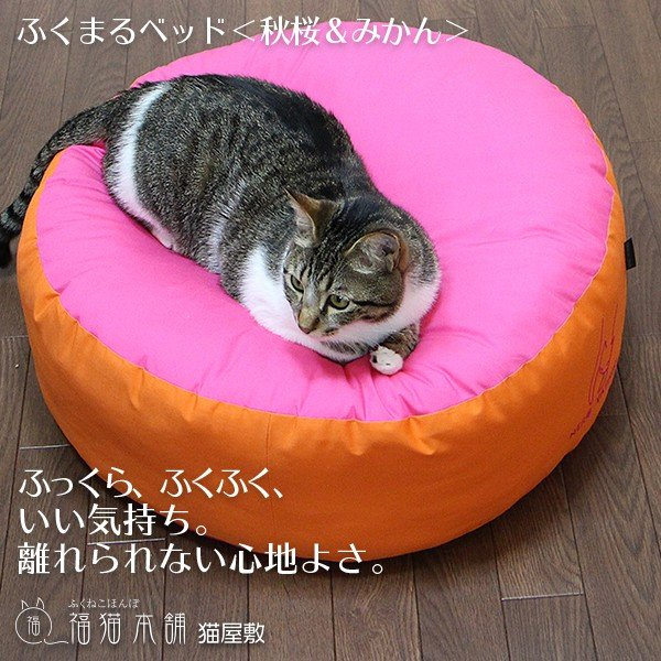 ふくまるベッド(秋桜&みかん)猫さんの大型ベッド|fukunekohonpo|03