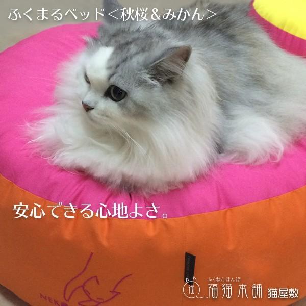 ふくまるベッド(秋桜&みかん)猫さんの大型ベッド|fukunekohonpo|04