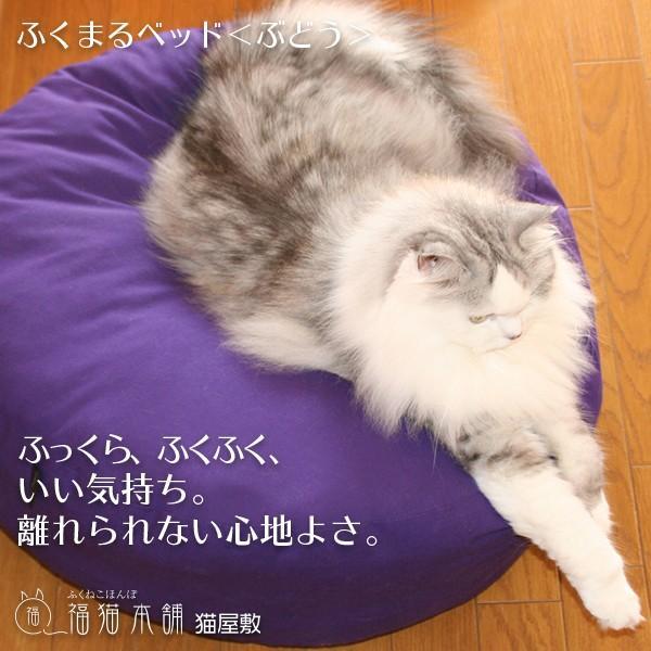 ふくまるベッド ぶどう 猫さんの大型ベッド|fukunekohonpo|03