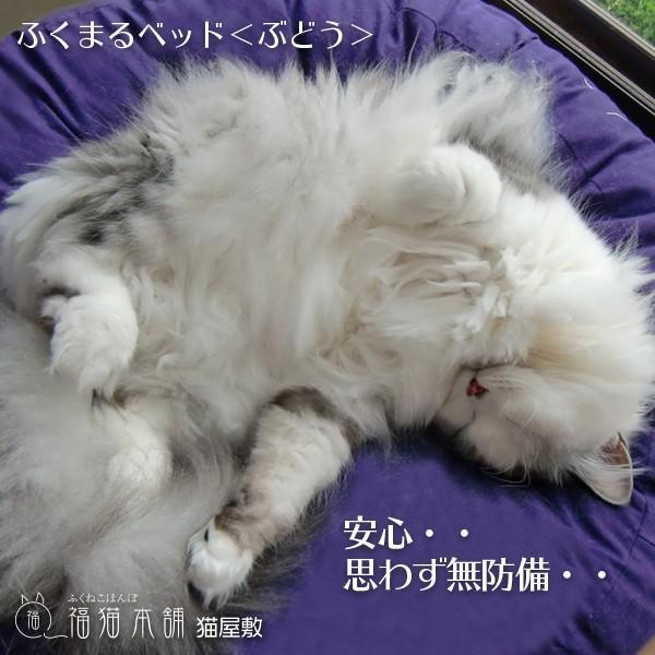 ふくまるベッド ぶどう 猫さんの大型ベッド|fukunekohonpo|04