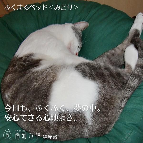 ふくまるベッド みどり 猫さんの大型ベッド fukunekohonpo 02