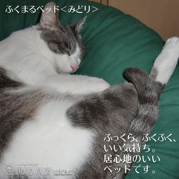 ふくまるベッド みどり 猫さんの大型ベッド fukunekohonpo 03