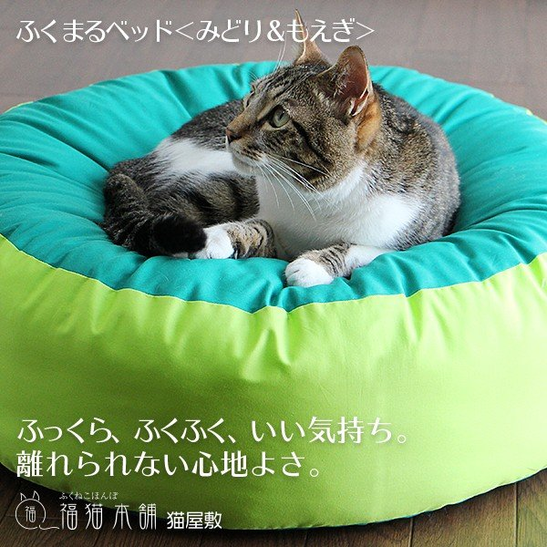 ふくまるベッド(みどり&もえぎ)猫さんの大型ベッド|fukunekohonpo|04