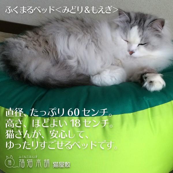 ふくまるベッド(みどり&もえぎ)猫さんの大型ベッド|fukunekohonpo|05