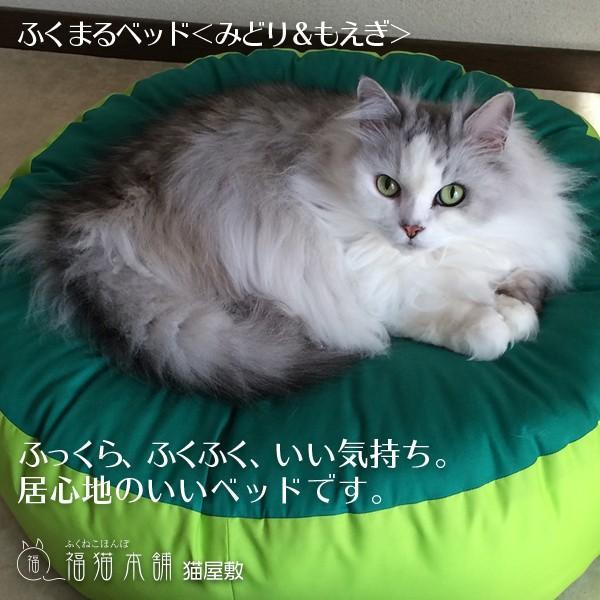 ふくまるベッド(みどり&もえぎ)猫さんの大型ベッド|fukunekohonpo|06