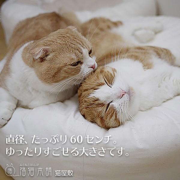 ふくまるベッド 生成り 猫さんの大型ベッド|fukunekohonpo|04