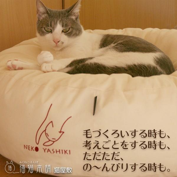 ふくまるベッド 生成り 猫さんの大型ベッド|fukunekohonpo|05