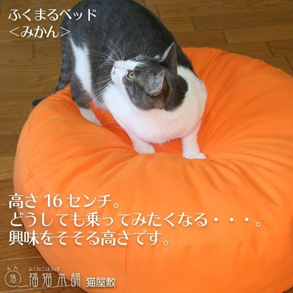 ふくまるベッド みかん 猫さんの大型ベッド|fukunekohonpo|04