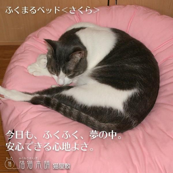 ふくまるベッド さくら 猫さんの大型ベッド|fukunekohonpo|03