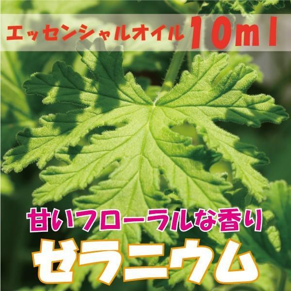 ゼラニウム (10ml)  エッセンシャルオイル|fukuoka-soleil-shop