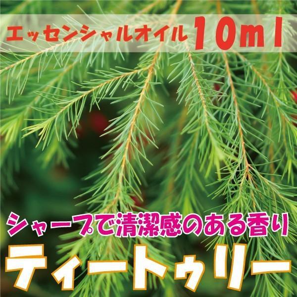 ティートゥリー (10ml)  エッセンシャルオイル|fukuoka-soleil-shop