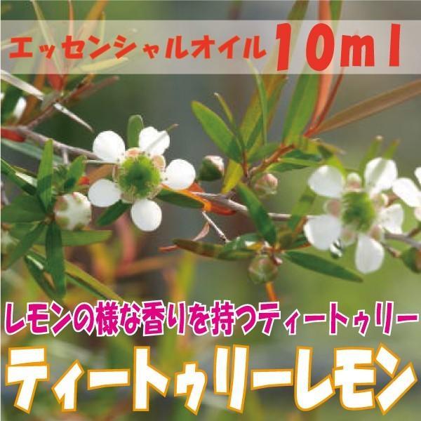 ティートゥリーレモン  (10ml)  エッセンシャルオイル|fukuoka-soleil-shop