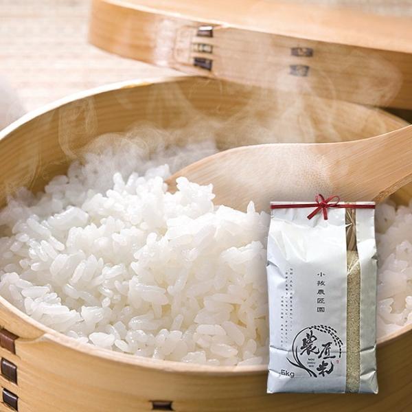 特別栽培米コシヒカリ「農匠米」5kg(令和元年産) ふくしまプライド|fukushima-ichiba