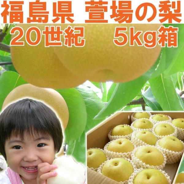 福島県 萱場産 20世紀 梨 5kg箱  (12〜18玉) 「ふくしまプライド。体感キャンペーン(果物/野菜)」|fukushimasan