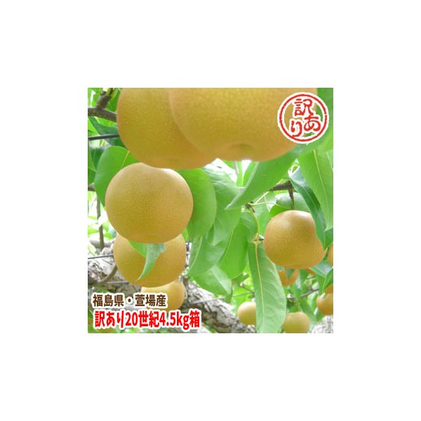 福島県 萱場産 訳アリ 20世紀 梨 4.5kg箱  (9〜20玉)|fukushimasan