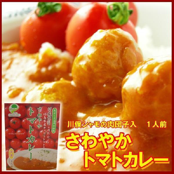 さわやかトマトカレー|fukushimasan