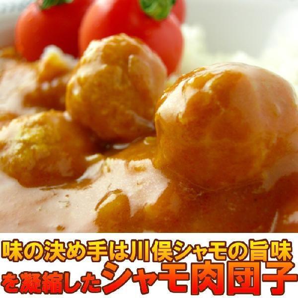 さわやかトマトカレー|fukushimasan|03