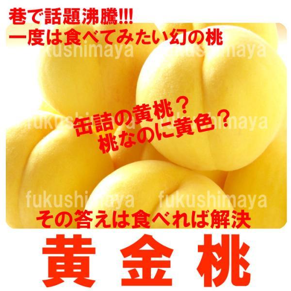 桃 黄金桃 黄貴妃等 福島県 献上桃の郷 桑折町産 1.7kg箱 5〜7玉入|fukushimasan|02