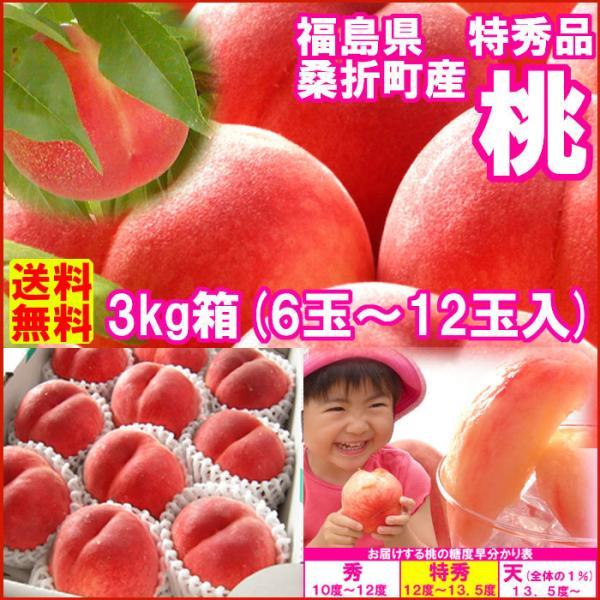 桃 福島県 献上桃の郷 桑折町産 特秀品桃 3kg箱 7玉〜12玉入|fukushimasan