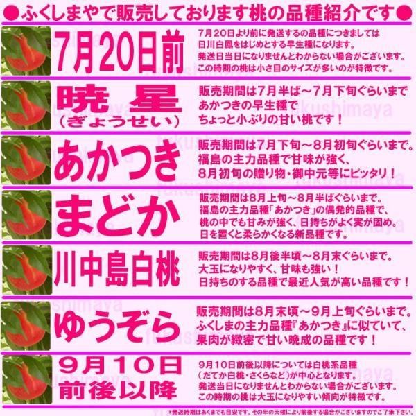 桃 福島県 献上桃の郷 桑折町産 特秀品桃 3kg箱 7玉〜12玉入|fukushimasan|03