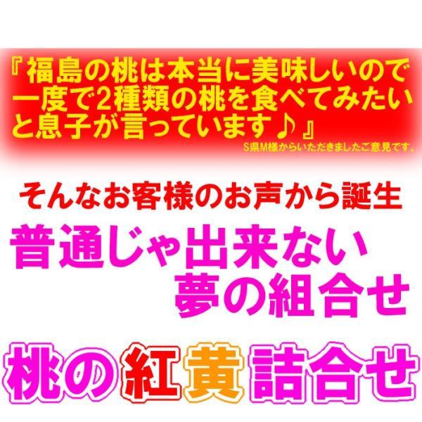 桃 詰合せ 3kg箱 7〜12玉入 fukushimasan 02