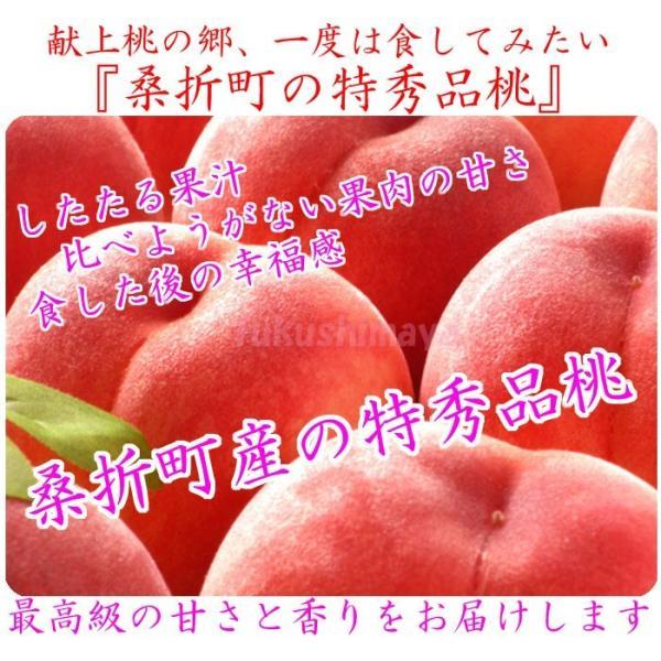 桃 福島県 献上桃の郷 桑折町産 特秀品桃 2.7kg箱 9〜15玉入|fukushimasan|11