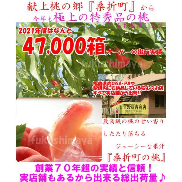桃 福島県 献上桃の郷 桑折町産 特秀品桃 2.7kg箱 9〜15玉入|fukushimasan|03