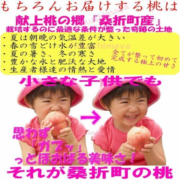 桃 福島県 献上桃の郷 桑折町産 特秀品桃 2.7kg箱 9〜15玉入|fukushimasan|04