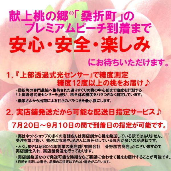 桃 福島県 献上桃の郷 桑折町産 特秀品桃 2.7kg箱 9〜15玉入|fukushimasan|06